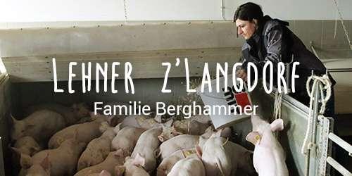 Hofkultur Partnerbauer - Familie Berghammer