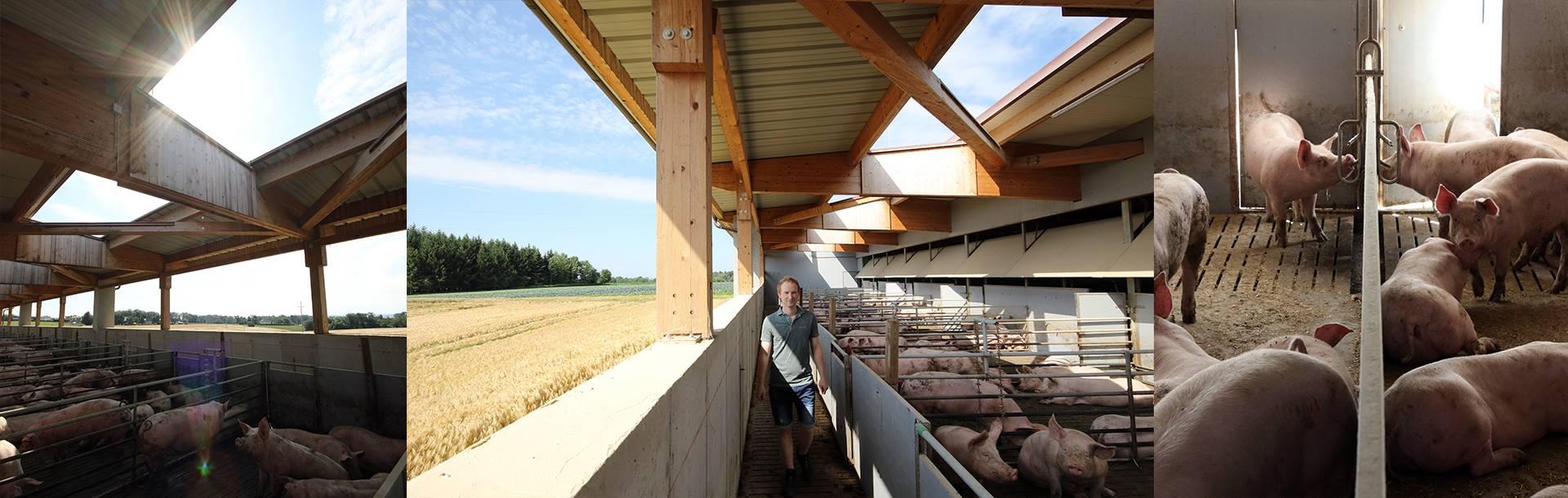 Huetthalers Hofkultur Partnerlandwirt Florian Gattermayr